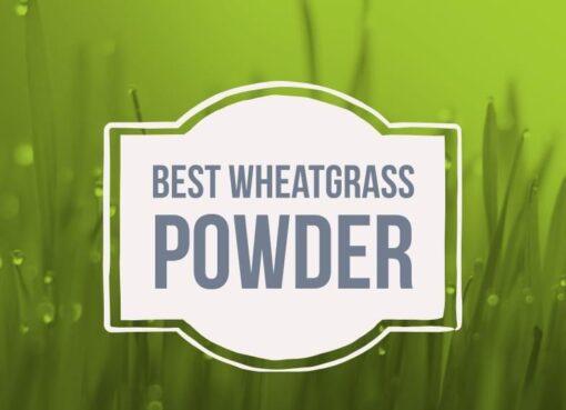 Best Wheatgrass Powder